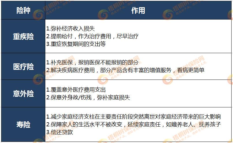 阿童沐1号重大疾病保险产品计划,保险方案